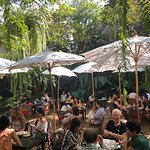 Photo of Fern Forest Cafe