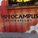 Photo of Hippocampus Bar and Restaurant
