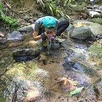 ผาหินกูบ (Pha Hin Kup) เขตรักษาพันธุ์สัตว์ป่าเขาสอยดาว ภายใต้การดูแลของหน่วยพิทักษ์ป่าบ้านทุ่งเพล ตำบลฉมัน อำเภอมะขาม จังหวัดจันทบุรี - ทางโครตชัน เดินจนล้า หล่อย พอเห็นวิวด้านบน หายเหนื่อยเป็นปลิดทิ้ง 😊