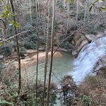 This is the Tiger Creek and the falls that run through the property