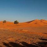Alla scoperta del Regno del Marocco