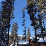 Baker Creek Mountain Resort Φωτογραφία