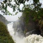 Murchison Falls. A short drive away & stunning!