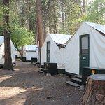 Zona tent