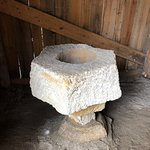 Fountain of Youth Archaeological Park Photo