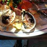 Moscovia oysters