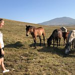 Livno Wild Horses Adventure Tours Photo