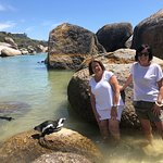 posing with penguins