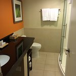 Room with a King-Size Bed with shower and a balcony on the 5th floor with view to hotel parking lot and NE 22nd Ave.