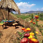 """Spend your perfect day at """"Kalaw Farm House"""" with fresh fruit juice and a good book."""