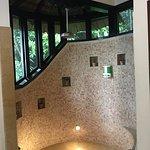 Beautiful indoor showers