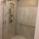 Main Level Master shower across from double vanity.
