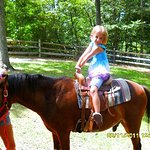 Pony rides are very popular with the kids!