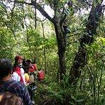Orchids Conservation at Tamblingan Rain Forest