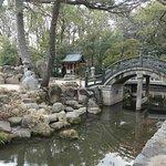 社殿の前にある神池です。