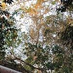 Foto Borneo Climb & Dive