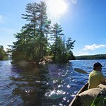 Blueberry Island, North tip of Little Hawk Lake looking south.