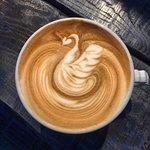 こんにちは😳♡ ・ すこし寒さも和らいできましたね ・ お出掛けしやすくなったので、是非当店の一押しラテを飲みにきてくださいね!🐻♡ #thevrroomkyoto #cafe #カフェ #vr #京都 #kyoto #カフェラテ #ラテ  #抹茶 #ラテアート #latteart #コーヒー #coffee #京都カフェ #木屋町 #インスタ映え #京都ランチ #おしゃれカフェ #デート #おしゃれ #かわいい  #ハンバーガー #写真好きな人と繋がりたい #ハンドメイド #handmade #ランチ  #coffeestand #スタンド #河原町カフェ #hamburger