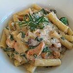 Rigatoni pasta chicken ,mushroom, spinach blue cheese sauce,