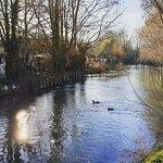 Le marais de Bourges Photo