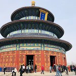 Tianjin Shore excursion Tours by Sunflower Tours China. China cruise tour guide Sunflower Li