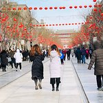 Tianjin shore excursion Tours by Sunflower Tours China. Hutong