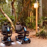 Best Disney approved mobility rental scooters by Gold Mobility Scooters. Reserve you scooter rental today for you next Walt Disney World Vacation at goldmobilityscooters.com
