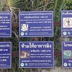 Tourist Information Phi Phi Island