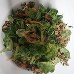 Heimischer Feldsalat frisch vom Acker