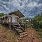 This is one of the clean and spacious eco-tents of this luxury tented camp.