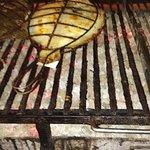 imagen Restaurante Elkano en Getaria