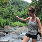 Daily adventure tours include jungle hikes to hidden waterfalls, snorkeling, kayaking, and cultural experiences.