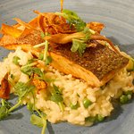 Pan-fried salmon with pea risotto
