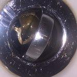 What looks like regurgitated food in the bathroom plug hole