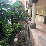 Садик перед Rama Shinto suites