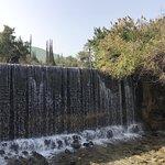 Gan HaShlosha National Park ภาพถ่าย