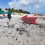 Beach Market Sign