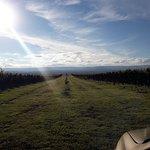 En el fondo una maravillosa vista de las sierras grandes, a las que la fotografía no hace honor.
