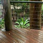 Bilde fra Pethers Rainforest Retreat
