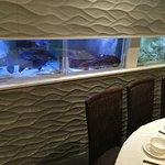 Seafood aquarium in restaurant