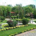 Сады Мечты