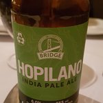 I'm a craft beer guy and like this local beer by Bridge. Nice clean with some good hops presence