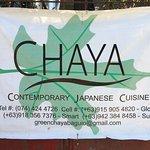 Chaya照片