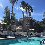 Pool - Desert Rose Resort Photo
