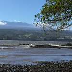 Hilo Bay Cafe照片