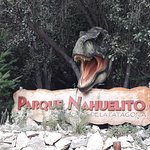 Parque Nahuelito Photo