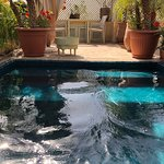 Pool - Riad Moullaoud Photo
