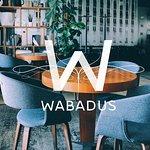 Zdjęcie Wabadus