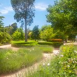 View natural gardens as you meander though