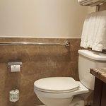 Photo of Holiday Inn L.I. City Manhattan View